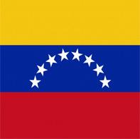 Выписка из торгового реестра Венесуэлы